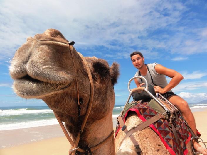 Kamelritt Australien